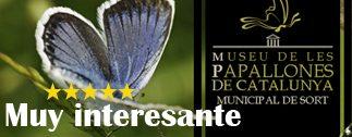 musseu_papallones